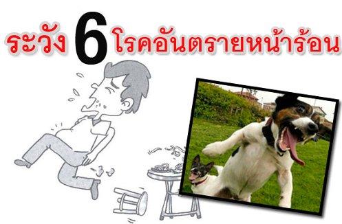 6 โรค ควรระวังช่วงหน้าร้อน