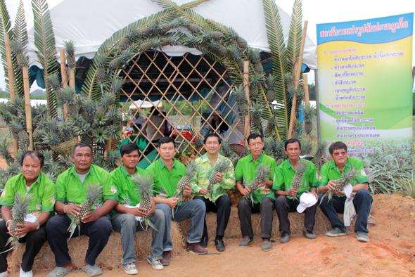 เกษตรจังหวัดภูเก็ต จัดงานวันท่องเที่ยวสวนสับปะรด