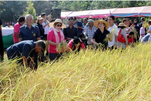 ภูเก็ตจัดโครงการคลินิกเกษตรเคลื่อนที่ฯ ครั้งที่ 1/2557