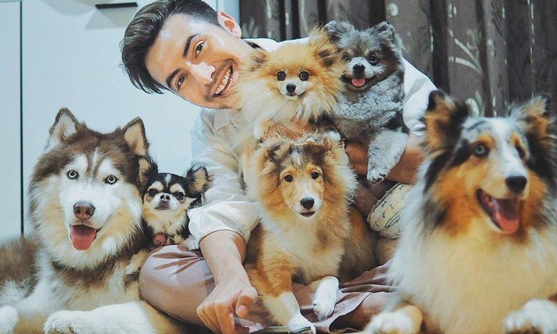 แช๊ะ เปลี่ยน ชีวิต – งานประกวดถ่ายภาพสุนัขจรที่จะทำให้เห็นว่า สุนัขธรรมดาๆ ก็น่ารักน่าเลี้ยง