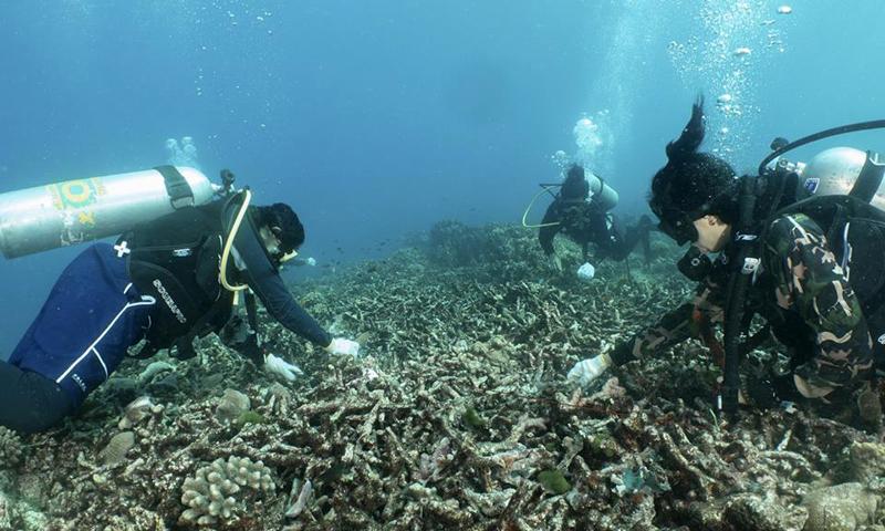 คณะวิทย์ฯ ร่วมกับหน่วยงานทางทะเล คืนความงามแนวปะการังอันดามัน