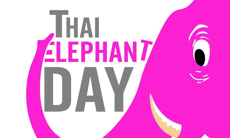 """""""จังซีลอน"""" เชิญชวนอนุรักษ์ช้างไทย"""