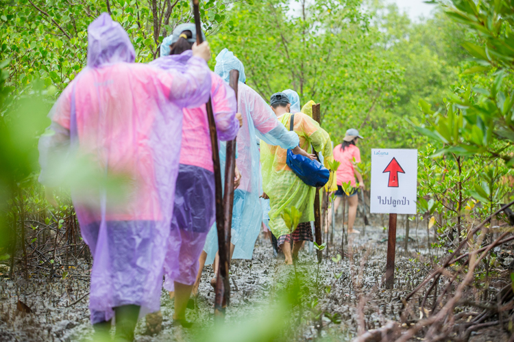 ลากูน่าภูเก็ตปลูกต้นไม้ 2,500 ต้นกลางสายฝน ฉลองกลุ่มบันยันทรีครบ 25 ปี ในโครงการร่วมสร้างชุมชนสีเขียว ปีที่ 13